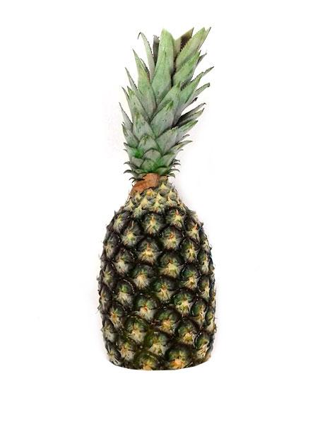 Abacaxi Orgânico Unidade – Terra Frutas Orgânicas