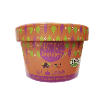 Sorbet de Açaí com Guaraná Orgânico 200g – Native Berries