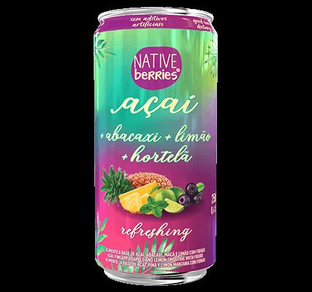 native-berries-produto-sucos-refreshing-imagem